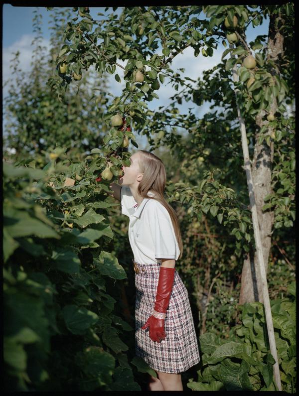 Fall Harvest for Säde